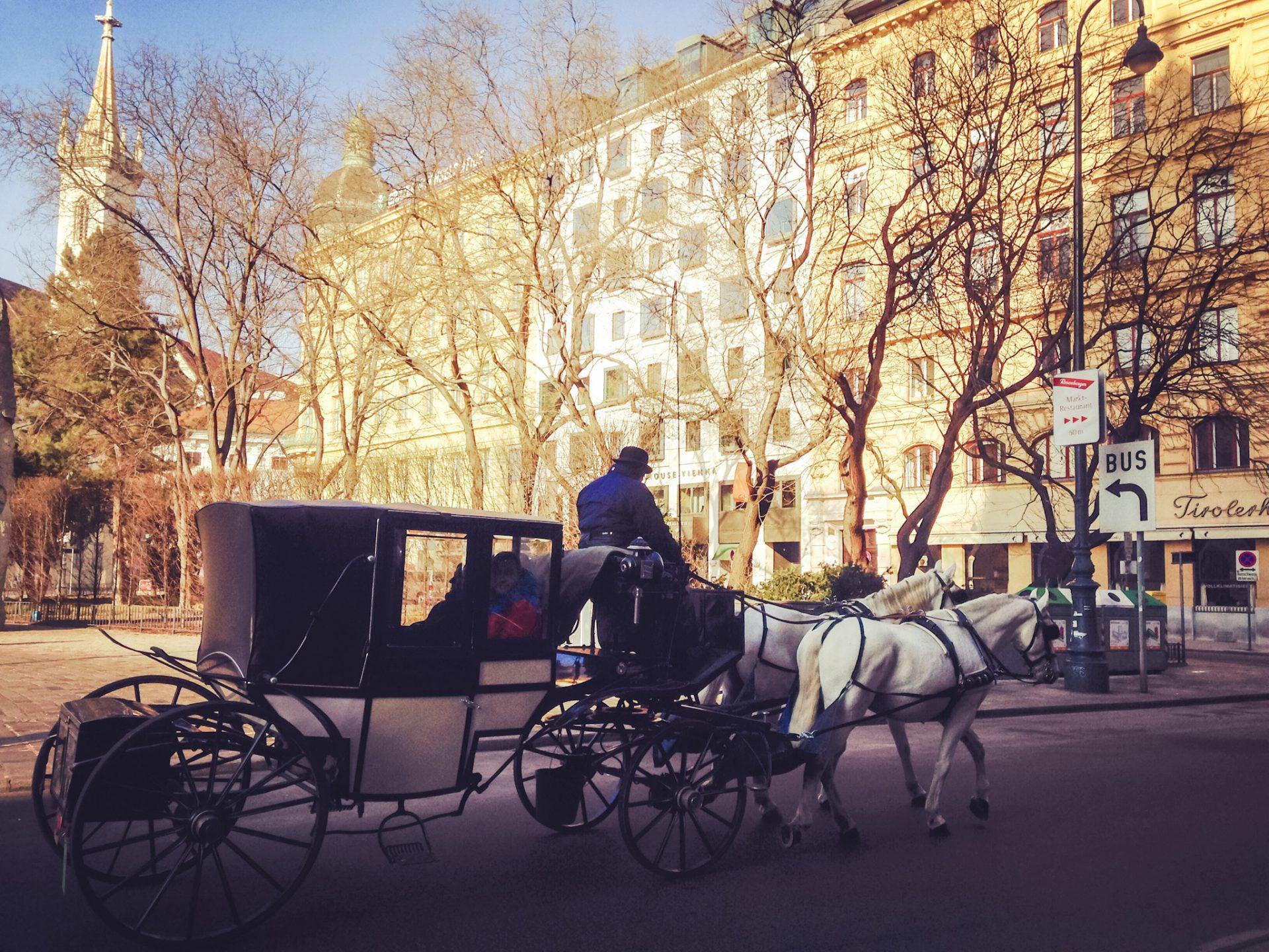 Wien im Winter